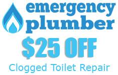 Clogged Toilet Repair
