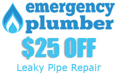 Leaky Pipe Repair