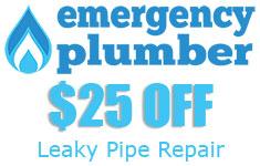 Leaky Pipe Repair